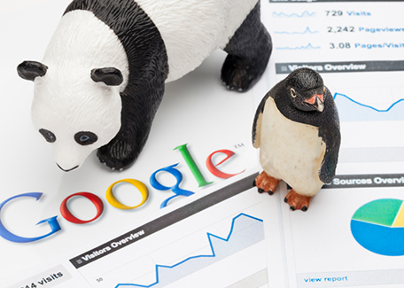 facts about google algorithm panda penguin
